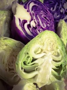 cabbage.jpb